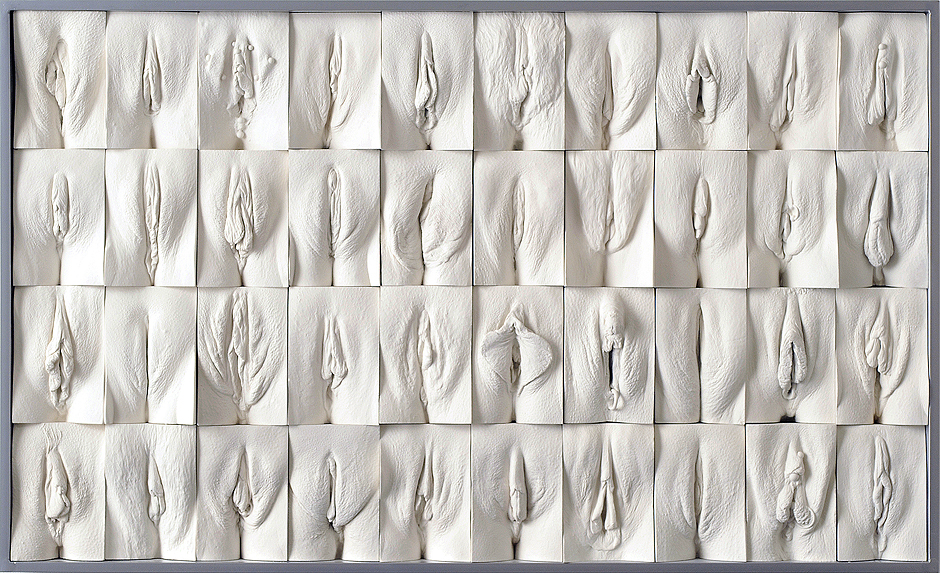 Panel 1_vaginaveggen