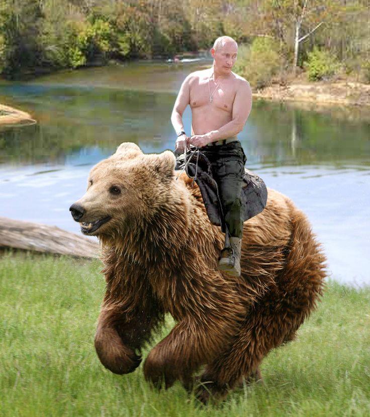 Putin_bear